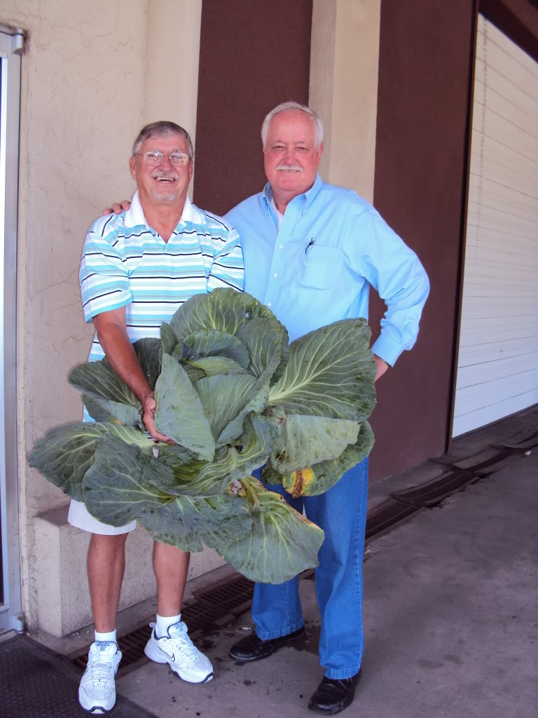 Herrin and Wayne with cabbage