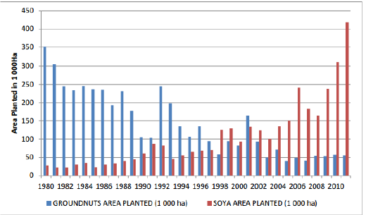 UPDATE - Pecan Nut Trees in South Africa- 40% Increase in Yield in Nuts pic 4